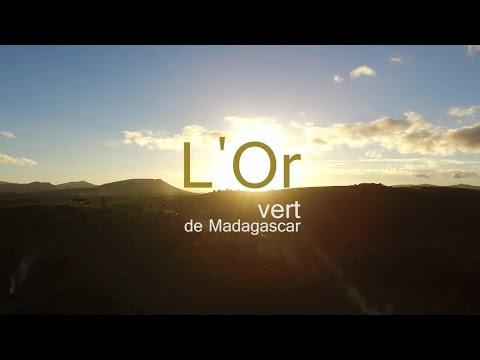 L'or vert de Madagascar