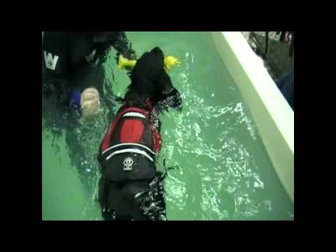 Bella receiving hydrotherapy at the start of her treatment