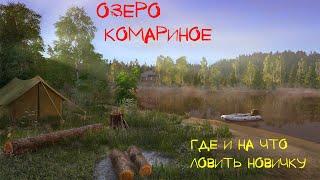 Русская Рыбалка 4 Озеро Комариное Советы новичкам