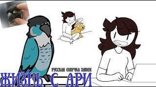 Жизнь с Ари || Living with Ari (Jaiden)
