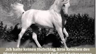 Dieter Hattrup liest Theodor Storm Der Schimmelreiter 1a