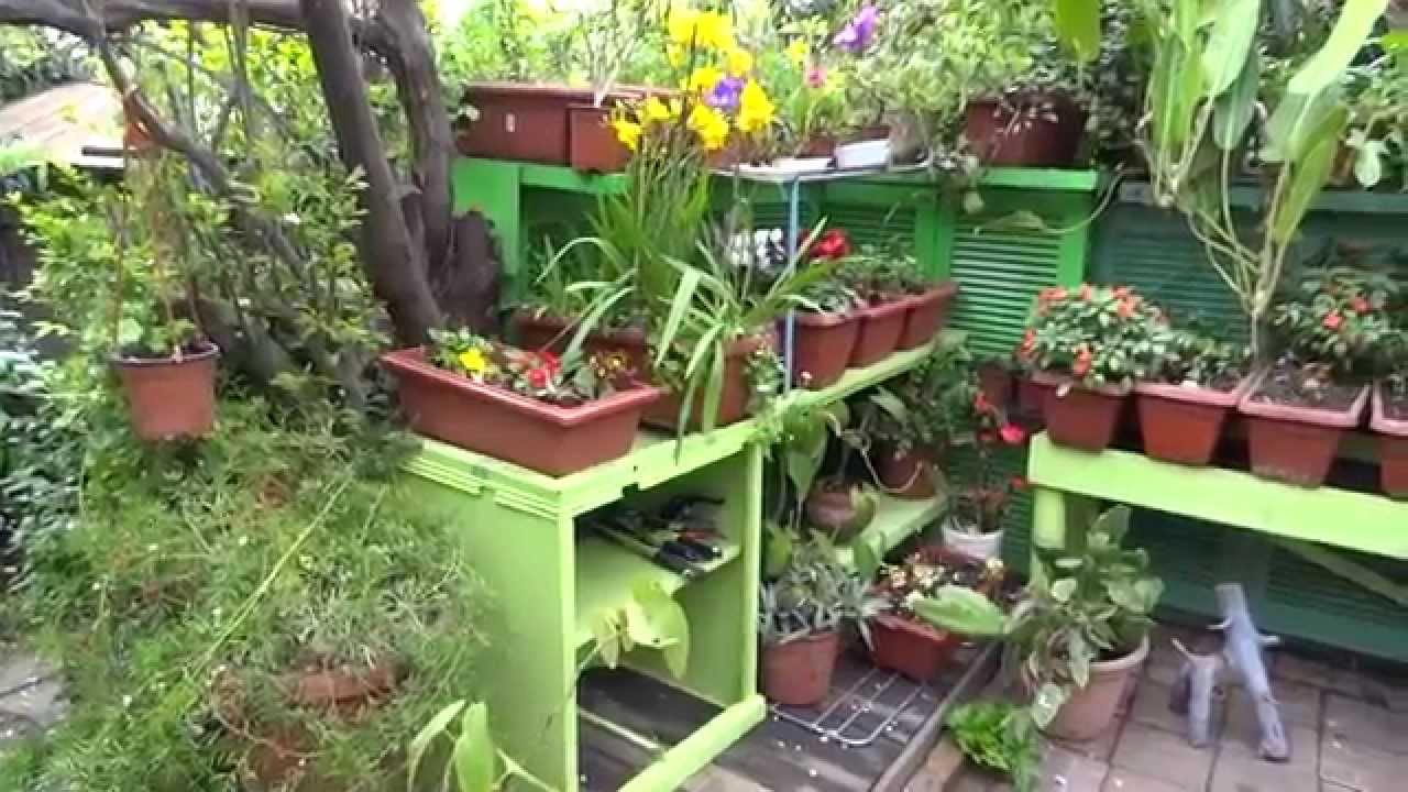Un paseo por mi jardin youtube for Jardin youtube