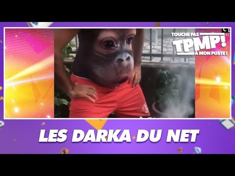 Le Top Darka Du Net !