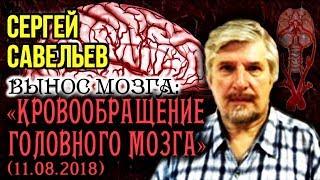 «ВЫНОС МОЗГА #51»: «Кровообращение головного мозга». 11.08.2018. Савельев С.В.