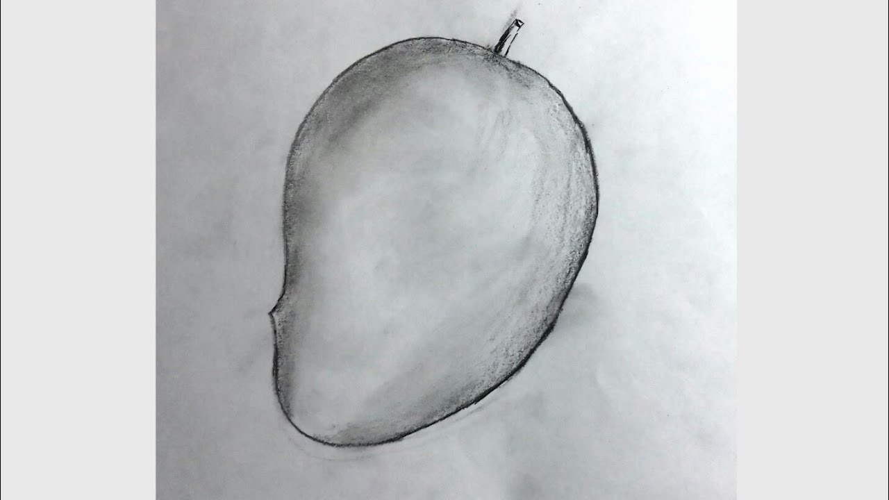 How To Draw A Mango Step By Step Mango Drawing Easy Youtube