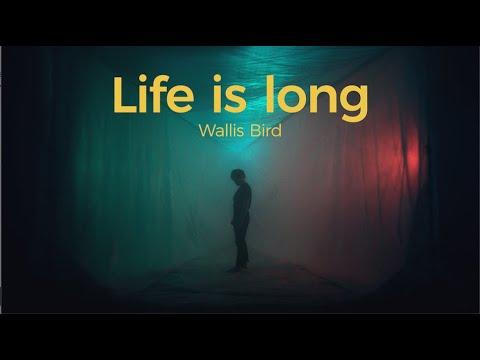 Wallis Bird - Life Is Long (Official Video) Mp3