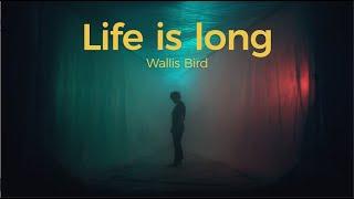 Wallis Bird - Life Is Long (Official Video)