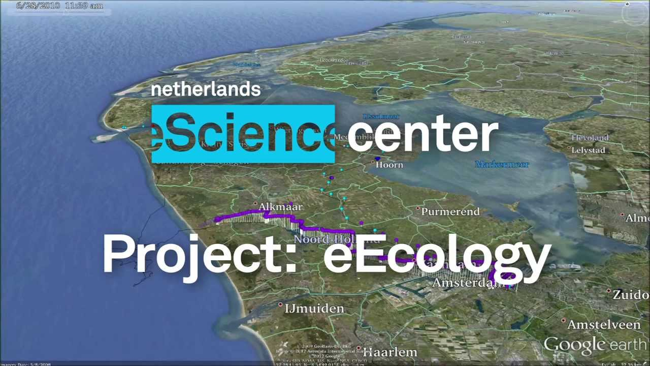 eEcology: Inspiration & discovery in ecology