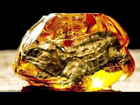 9 Prehistoric Animals That STILL Exist TODAY!