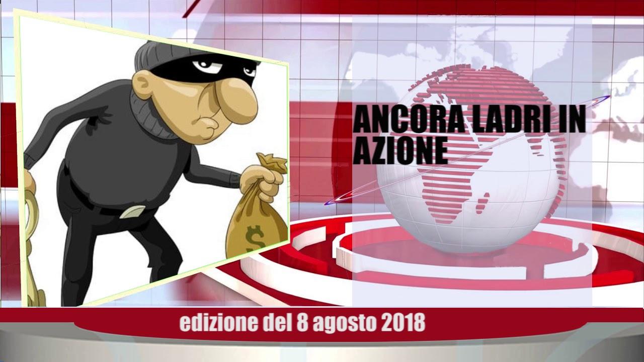 Velluto Notizie Web Tv Senigallia Ed  08 08 2018