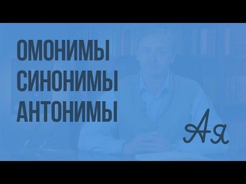 Омонимы. Синонимы. Антонимы. Видеоурок по русскому языку 5 класс
