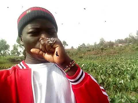 Download shamba kubwa