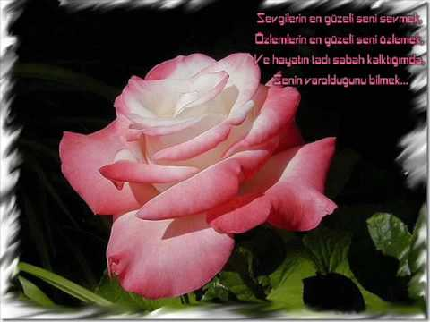 Dogum günün kutlu olsun Ayse (: (www.iyiki-varsin.de.tl
