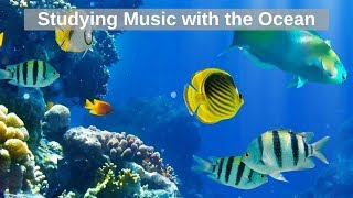 Studying music for concentration 24/7, Relaxing music, Sleep Meditation Music, Yoga Music