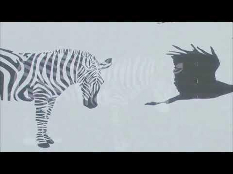 Ikimonogakari - Natsuzora Graffity