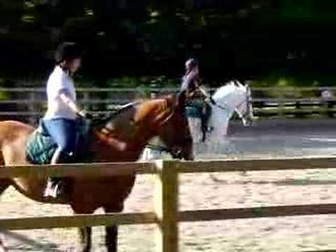 Riding Lesson at RMA Sandhurst (3 of 3)