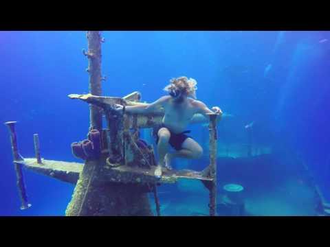 Don Fosters Dive Cayman Film Fest 2016 - Dofo Dreams