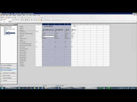 Management Reporter for Microsoft Dynamics ERP