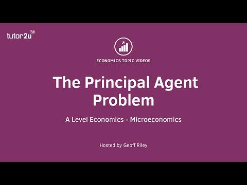 The Principal Agent Problem