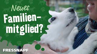 Ein Hund zieht ein | FRESSNAPF