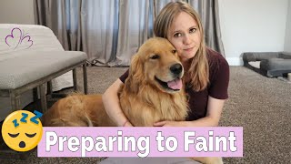 PREPARING TO FAINT  What I Do After my Service Dog Alerts (& fainting on camera w/ dog responding)
