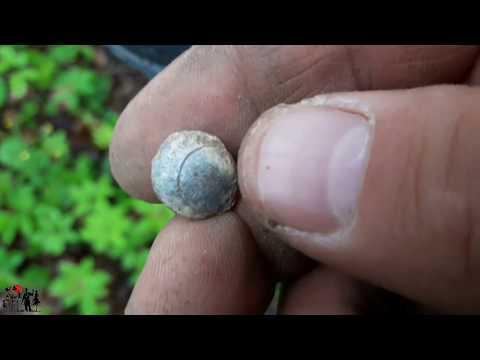 Коп по старине с металлоискателем.Поиск старинных монет.Приборный поиск.