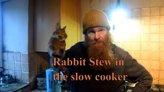 Rabbit stew in the slow cooker