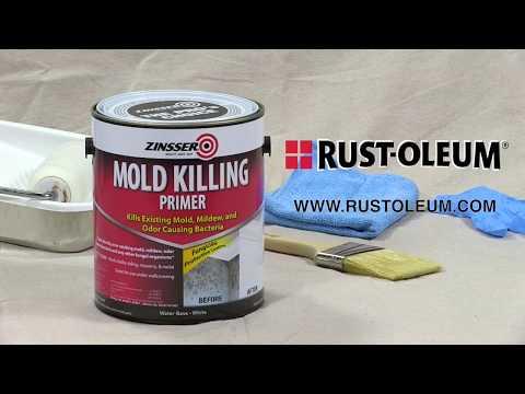 How To Apply Zinsser Mold Killing Primer