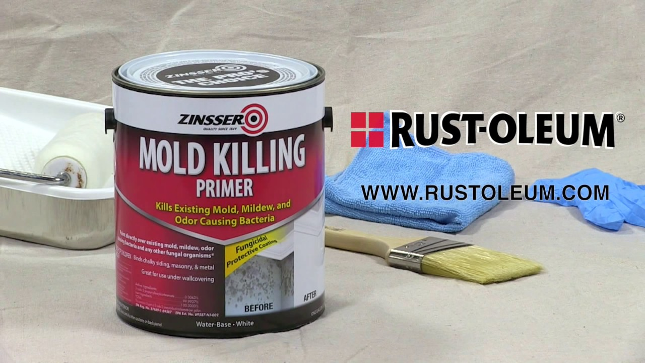 How To Video Ly Zinsser Mold Killing Primer