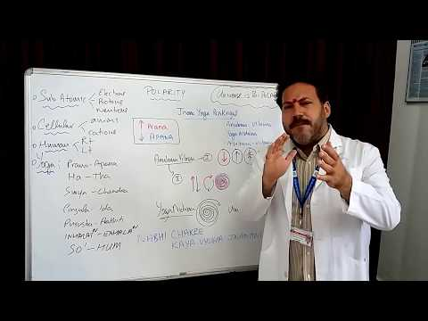 Jnana Yoga Polarity Prakriyas of Gitananda Tradition by Dr Ananda