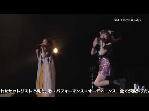 【DVD】T&T~黄色と水色vol.2~