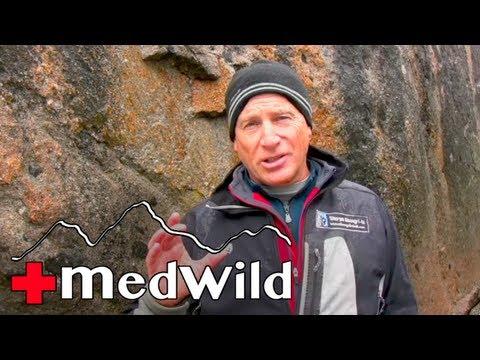 Wilderness Medicine: Altitude Illness - HAPE Medications