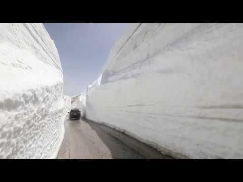 5fb63c9dd المدن - جاء لهيب الصيف وثلوج الأرز صامدة
