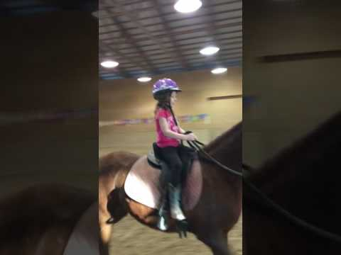 Kinley's Freestyle