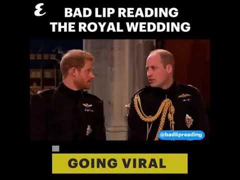Royal Wedding Bad Lip Reading.Royal Wedding Bad Lip Syncing