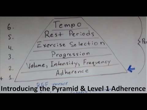 Muscle and Strength Training Pyramid Level 1 and intro