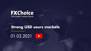 Webinar Strong USD sours markets 01 02 2021