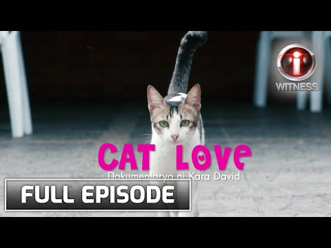 I-Witness: 'Cat Love,' dokumentaryo ni Kara David (Full Episode)