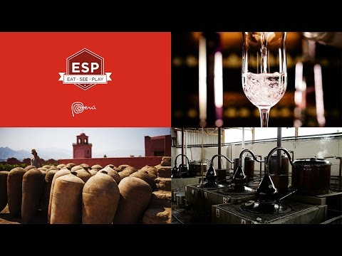 wine article What is Pisco