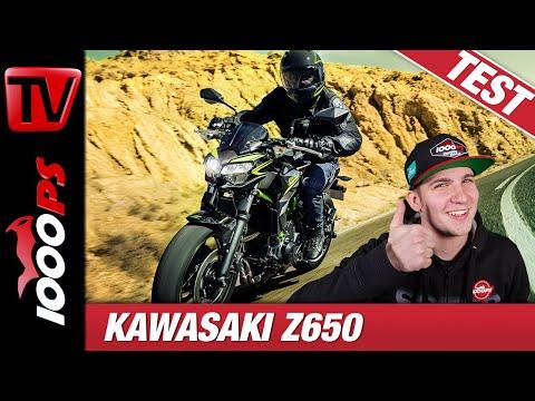 Kawasaki Z650 2020 Test - Die Beste Der Klasse?