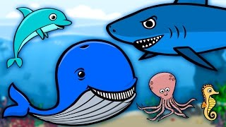 Podwodny świat zwierząt - Zwierzęta dla dzieci | CzyWieszJak