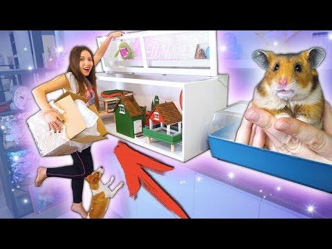 Гигантский ДОМ для Хомяка Эдди Очень дорогая Распаковка и Обзор Зоо Покупки | Elli Di Pets