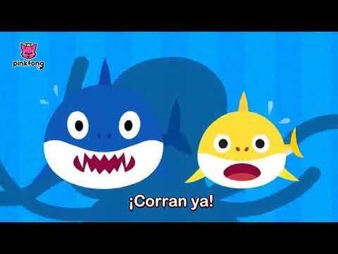 baby-shark-español-latino-remix-¿donde-esta-tiburon-papa?