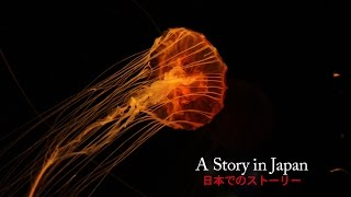 A Story in Japan (2016) Short Film