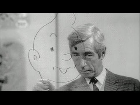 """Exposition """"Hergé"""" : qui était le créateur de Tintin ?"""