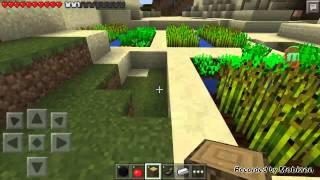 Minecraft 999 seed #1 爆seed