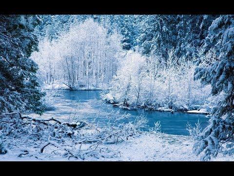 Сказочный лес, зима и волшебная музыка.