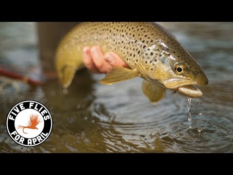 Five Flies For April 2019 - Fly Fishing The Colorado River In Spring