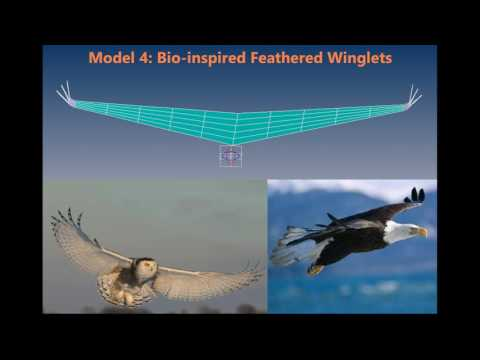 Simulating the Effect of Winglets on Wake Vorticity