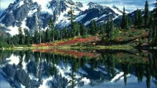 Franz Schubert - Symphony No. 5: Menuetto